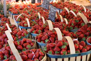 Strawberries of Carpentras.